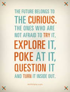 The future belongs to the CURIOUS. The one who are not afraid to try it, EXPLORE it, POKE at it, QUESTION it and TURN it inside out.